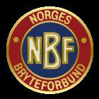 NBF_logo_700